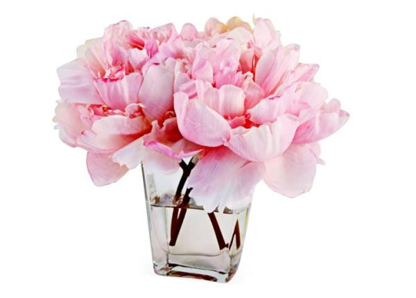 9'' Peonies in Tapered Vase, Faux